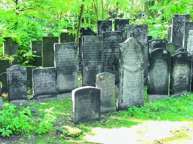 Foto: NordNordWest / www.wikpedia.de