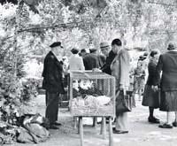 Foto: Bergedorfer Wochenmarkt am Rande des Villenviertels, ca. 1951. H. Willers.